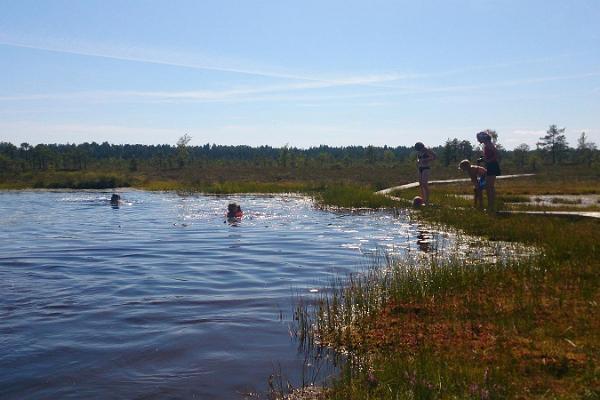 Поход на каноэ по Соомаа вместе с прогулкой по болоту от Kanuu.ee