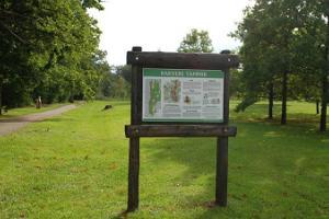 Der Eichenwald von Rakvere, der Lehrpfad