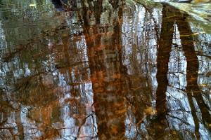 Die Wanderwege und Loipen des Freizeitrums Holstre-Polli