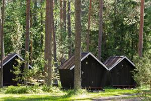 Палаточный лагерь Каукси на берегу Чудского озера