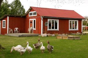 Teispere gårds djur- och fågelpark