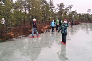 Pārgājieni ar sniega kurpēm Meelvas purvā
