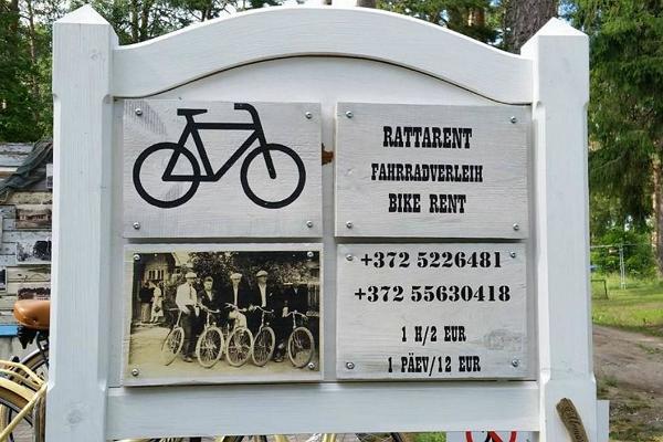 Jalgrattarent Lahemaa Rahvuspargis