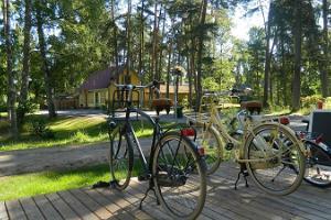 Geführte Fahrradtouren im Nationalpark Lahemaa