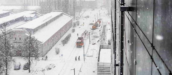 Tips on surviving a northern winter in Estonia