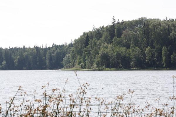 Luonnon tarkkailua Otepään luonnonpuistossa