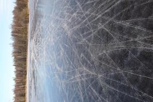 Brich aus - Schlittschuhwandern im Nationalpark Soomaa