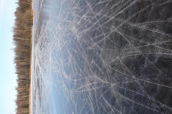 Seikle Vabaks retkiluistelu Soomaan kansallispuistossa