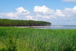 Kihnu Reesuratas - Kihnu saaretuur