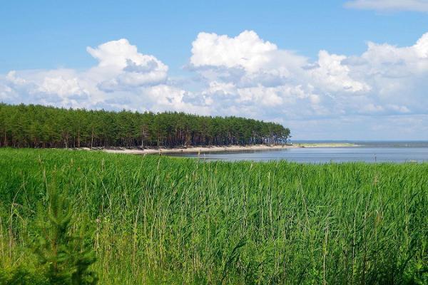 Kihnu Reesuratas – тур по острову Кихну