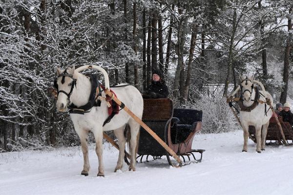 Voore Tallid (Voore stall) hästvagnsturer med picknick