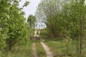 Loodus-jalgrattamatk Paljassaare linnukaitsealale