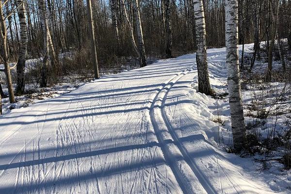 Lähte ski trails