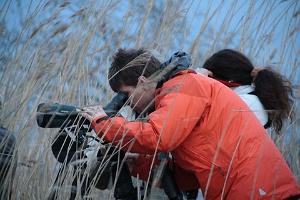 Self-Guided Birdwatching Tour in Estonia with a smart device