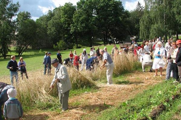 Эстонский музей сельского хозяйства, люди, скашивающие сено косой, и зрители