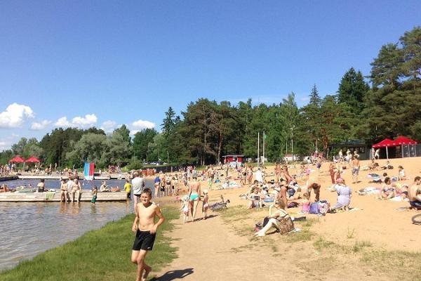 Verevi järve rand