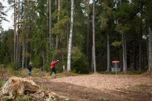 Paunkülan lomakeskuksen frisbeegolfrata