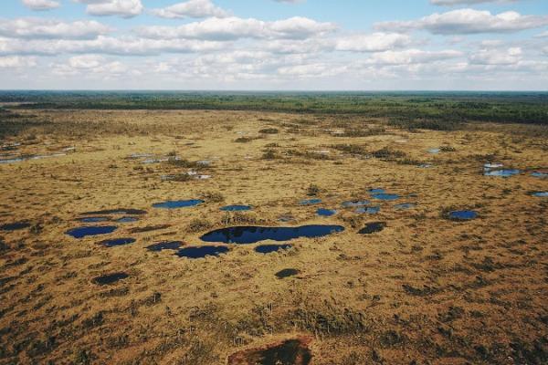RMK Loosalu- Paluküla naturvandringsled