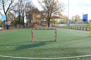 Игровая площадка на стадионе Тамме