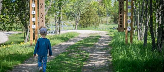 Pārgājienu vilinājums pa Igaunijas Dabas takām