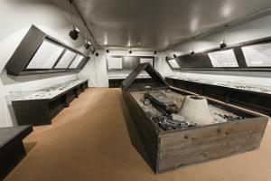 Viron arkeologinen museo