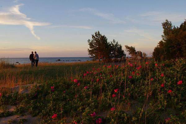 Eintägige Autotour aus Tartu zur Entdeckung des Nationalparks Lahemaa