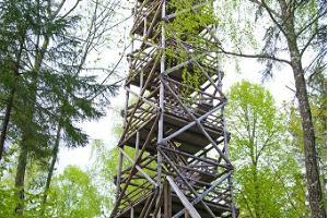Päiväksi Tartosta Ida-Virumaata tutkimaan: luonto, teollisuusmaisemat ja Narvan kaupunki