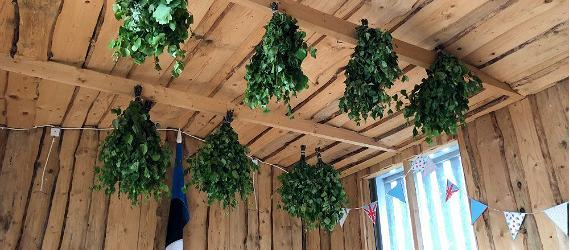 Diese Sauna-Quirle trocknen an den Dachbalken des Sauna-Hauses