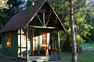 Saia Forest House