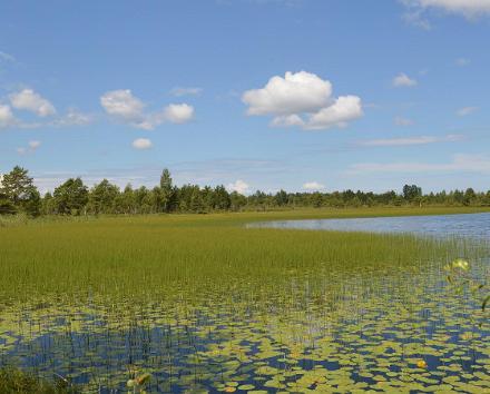 Omal käel Põhja-Eesti loodusreis