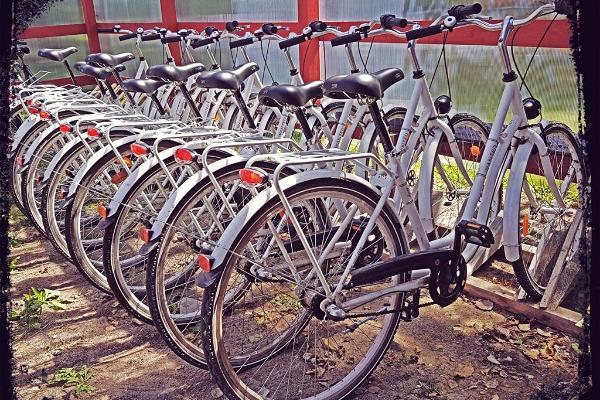 Fahrradverleih auf Vormsi, im Hafen Sviby