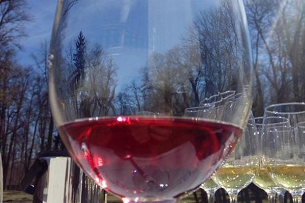 Alatskivi muižas garšas: vietējo garšu veikals un vīna darītava