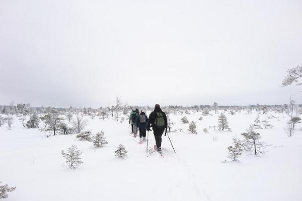 """""""Seikle Vabaks"""" pārgājiens ar sniega kurpēm Somā nacionālajā parkā"""