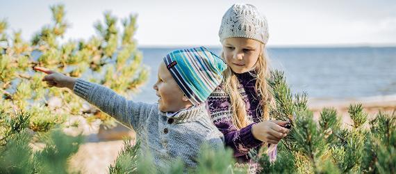 Prova höstlovet eller budgetweekend i Estland och rädda plånboken