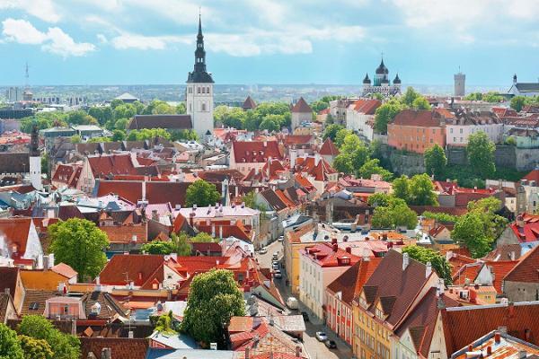 Tallinn Private Old Town Walking Tour & Round-Trip Transfer