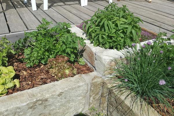 Kuressaaren perheasunto puutarhalla ja terassilla