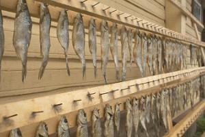 Sipulitien kalabuffet-päivä