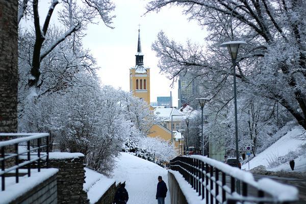 Guidad promenad genom Tallinns gamla stad
