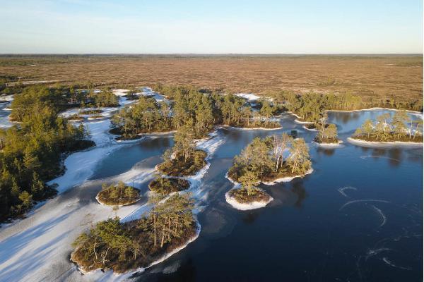 Bog hike and skating on bog-pools by Seikle Vabaks