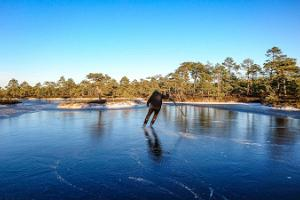 Bog hike and skating on bog-pools by Seikle Vabaks