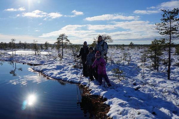 Pārgājieni gida pavadībā ar sniega kurpēm Kakerdaja purvā