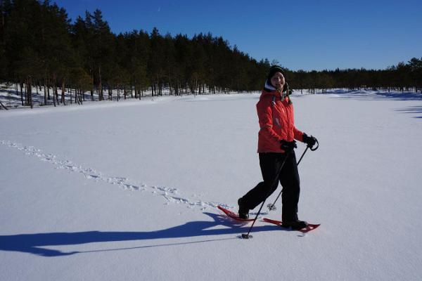 Schneeschuhwanderungen des Wanderführers