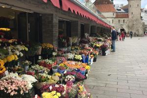Tallinna lilleturg