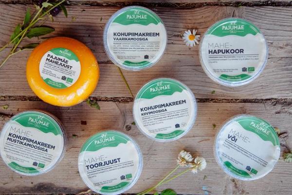 Tasting of dairy products at Pajumäe Farm