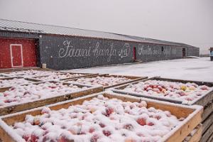 Besök till Jaanihanso Ciderfabrik
