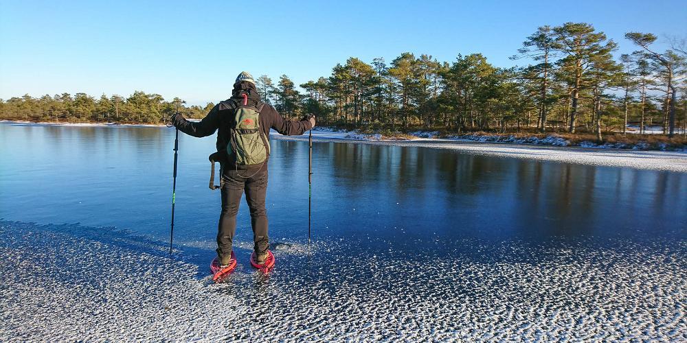 Ice skating on a wetland lake, Visit Estonia