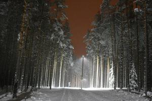 Kubija health trails and training area