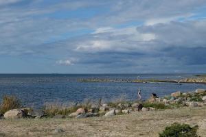 Suarõ ninä - ranta ja vanha satamapaikka
