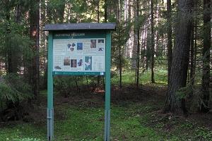 Huitbergin vaellusreitti ja kalkkikumpu
