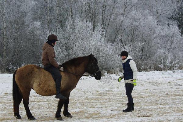 Ratsastus Karl-Erikun ratsutilalla